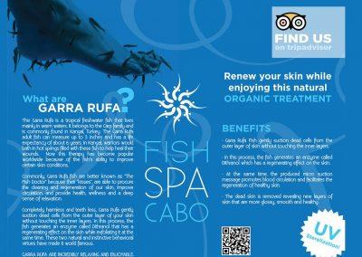 Fish Spa Cabo