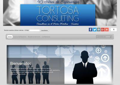 Tortosa Consulting